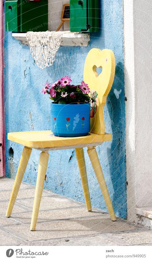 Burano Tourismus Häusliches Leben Wohnung Haus Stuhl Pflanze Blume Blüte Topfpflanze Venedig Italien Dorf Fischerdorf Hafenstadt Altstadt Mauer Wand Fassade