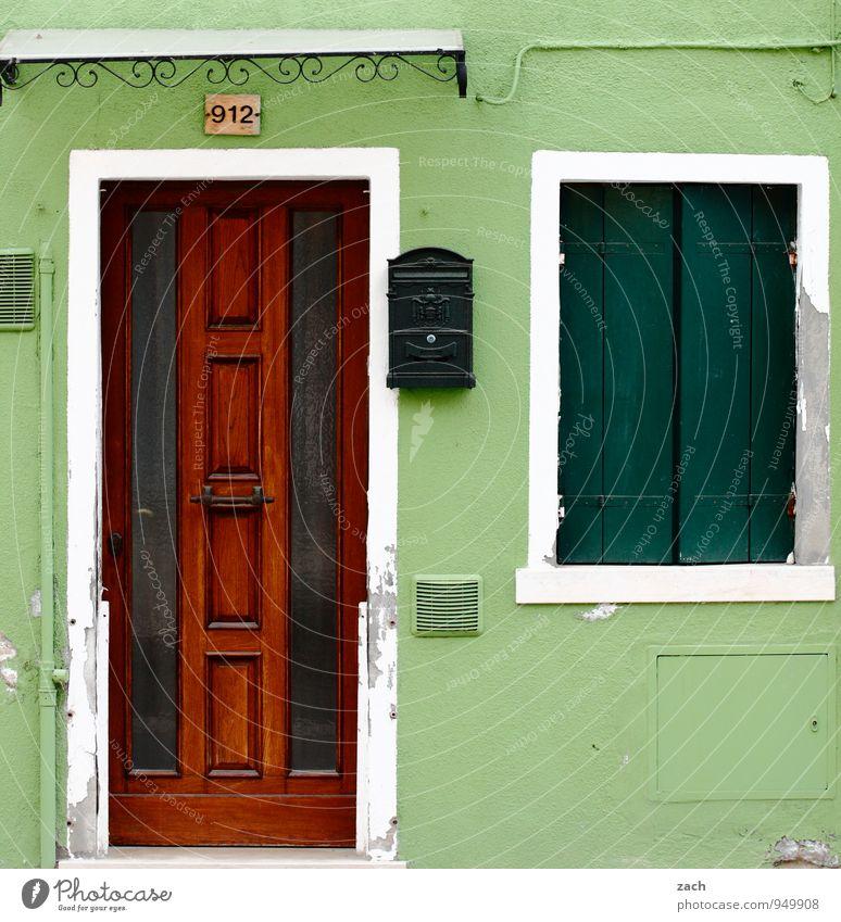 grün Häusliches Leben Haus Lampe Topfpflanze Fischerdorf Altstadt Mauer Wand Fassade Fenster Tür Holz Venedig Burano Italien Vogelkäfig Fensterladen Farbfoto
