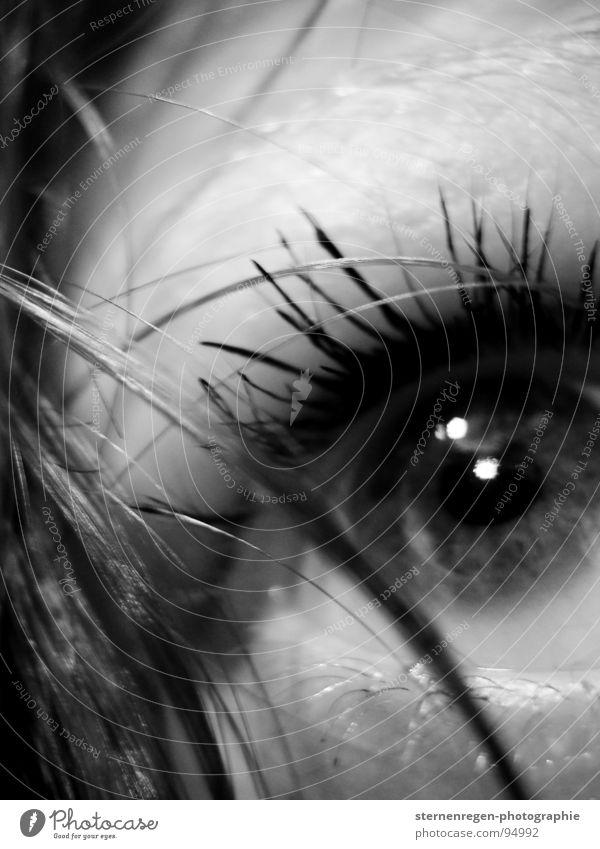 . Wasser Auge Angst nass Spiegel Sehnsucht Puppe Selbstportrait Piercing Wimpern schwarzhaarig Frauengesicht Lippenpiercing