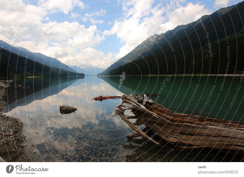 mit Fluchtpunkt Ferien & Urlaub & Reisen Ferne Landschaft Wasser Himmel Wolken Sommer Schönes Wetter Baum Hügel Berge u. Gebirge Küste Seeufer Duffey Lake