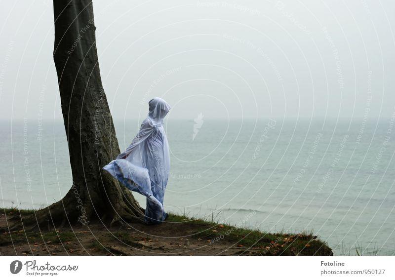 Tanz mit dem Meer II Mensch feminin Junge Frau Jugendliche 1 Umwelt Natur Landschaft Pflanze Urelemente Erde Wasser Himmel Herbst Baum Küste Strand Ostsee grau
