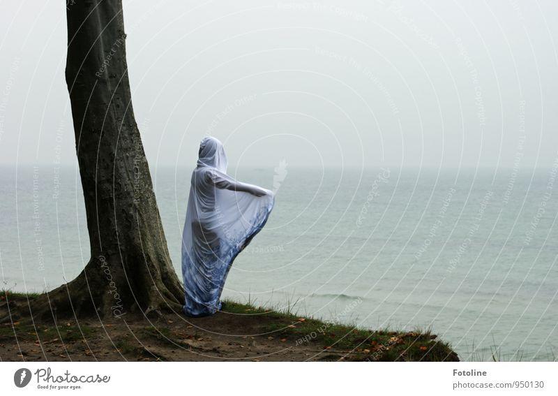 Dort Mensch feminin Junge Frau Jugendliche 1 Umwelt Natur Landschaft Pflanze Urelemente Erde Wasser Himmel Herbst Baum Küste Ostsee Meer natürlich Umhang Kapuze