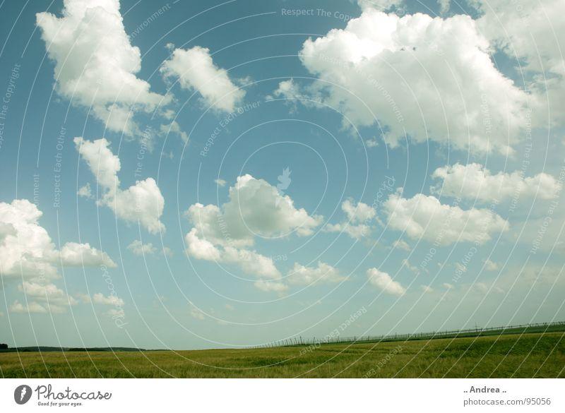 Weite Welt Himmel blau grün weiß Landschaft Wolken Gras weich hell-blau himmelblau Watte Betriebssystem Windows XP