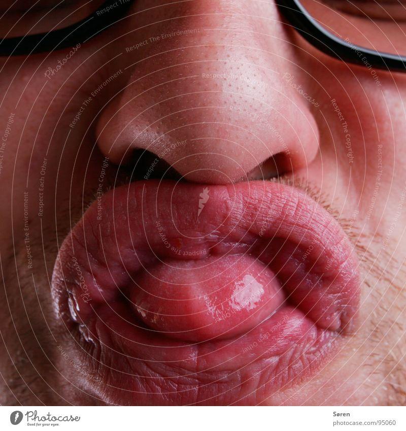 Dicker Schiss Gesicht Mund lustig Nase Lippen Bart Zunge frech Grimasse Verzerrung Dreitagebart schmollen mündlich Schmatz Knollnase