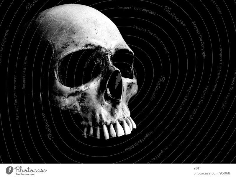 heat shot Schrecken Moral abstrakt Schwarzweißfoto Tod Schädel Strukturen & Formen avaiable light Angst