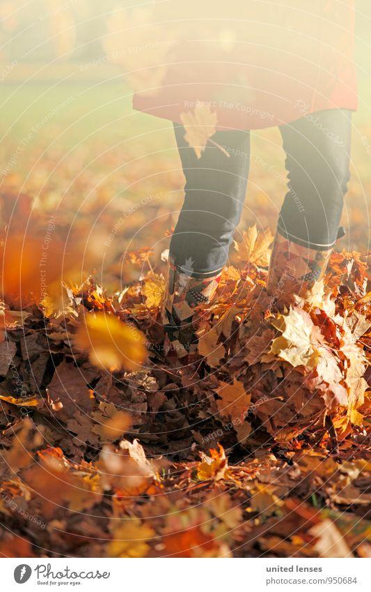 AK# Raschellaub Frau Natur Blatt Herbst Kunst Zufriedenheit laufen ästhetisch Herbstlaub herbstlich Stiefel Mantel Herbstfärbung Herbstbeginn Herbstwetter