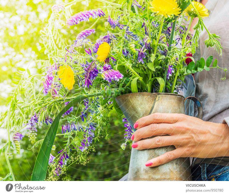 Wilde Sommerblumen im alten Krug in der Hand Mensch Frau Natur Pflanze grün Blume gelb Erwachsene Leben Frühling Garten Park Lifestyle Freizeit & Hobby