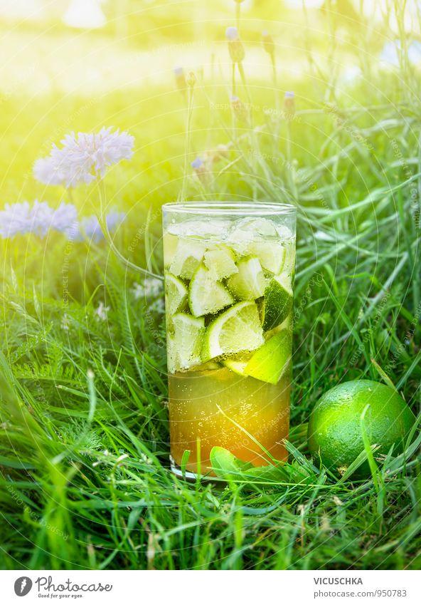 Eistee mit Limette im Garten Blumen Lebensmittel Frucht Getränk Erfrischungsgetränk Limonade Tee Alkohol Sekt Prosecco Longdrink Cocktail Glas Lifestyle Stil