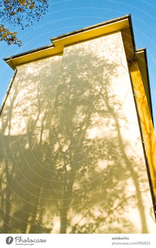 Unbekanntes Gebäude Himmel Natur Sonne Baum Blatt Haus Wand Herbst Fassade Wetter Häusliches Leben Klima Ast Textfreiraum Dach