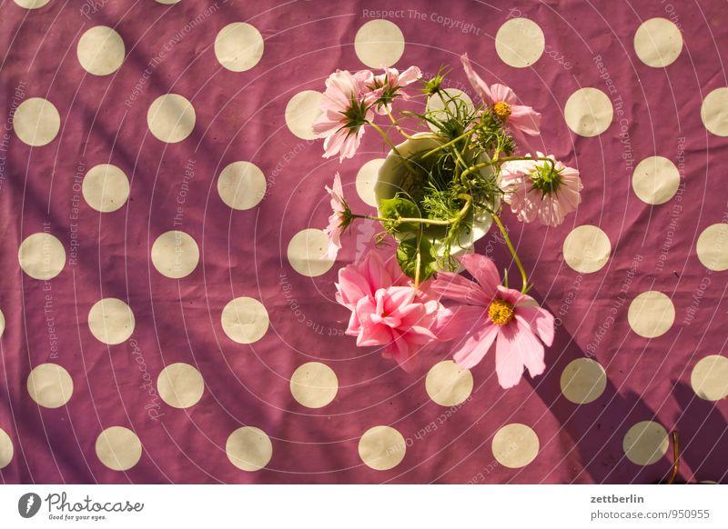 Pünktchen vs. Blümchen Tisch Tischwäsche Design Muster Punkt Blume Blumenvase Vase Vogelperspektive Blüte Dekoration & Verzierung Textfreiraum Neigung violett