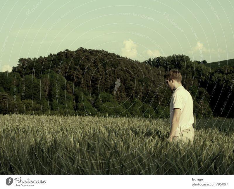 Marc ist der Gladiator Mensch Mann Feld Getreide Mitte berühren Landwirtschaft Korn Weizen Ähren Roggen geradeaus Weizenfeld