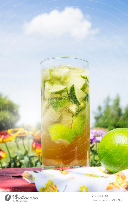 Eistee im Garten am Himmel Hintergrund Sommer Erholung rot Blume Gesunde Ernährung gelb Wärme Leben Lebensmittel Lifestyle Frucht Design Glas