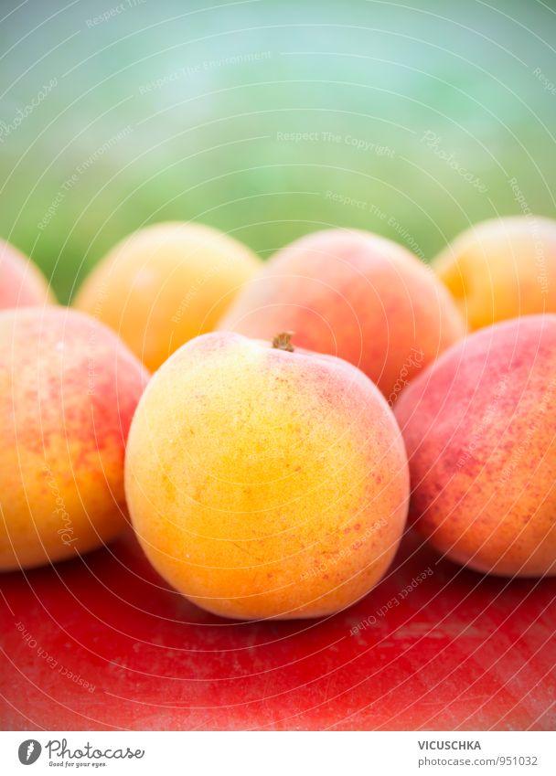 Aprikosen auf roten Tisch in Garten Lebensmittel Frucht Lifestyle Gesunde Ernährung Sommer Natur gelb grün Garden reif Ernte Außenaufnahme Farbfoto Nahaufnahme