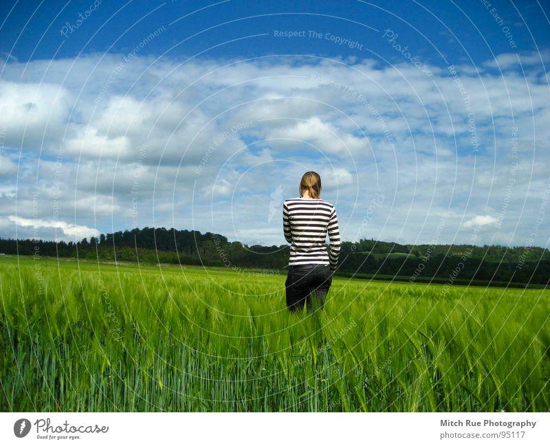 born to be FREE 2 Natur schön Himmel grün blau ruhig Wolken Ferne Wiese Gefühle Gras Frühling Freiheit Glück Traurigkeit Zufriedenheit