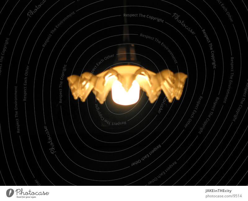 Spinnen_licht Licht Lampe Häusliches Leben Wohnzimmerlampe