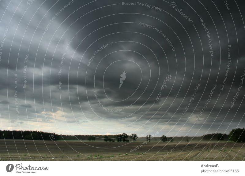 Sommer Feld Kornfeld Sturm Orkan Unwetter Unwetterwarnung Wetterdienst Wolken Wind Gewitter Amerika Landschaft Mais Regen Hagel Himmel Tornado