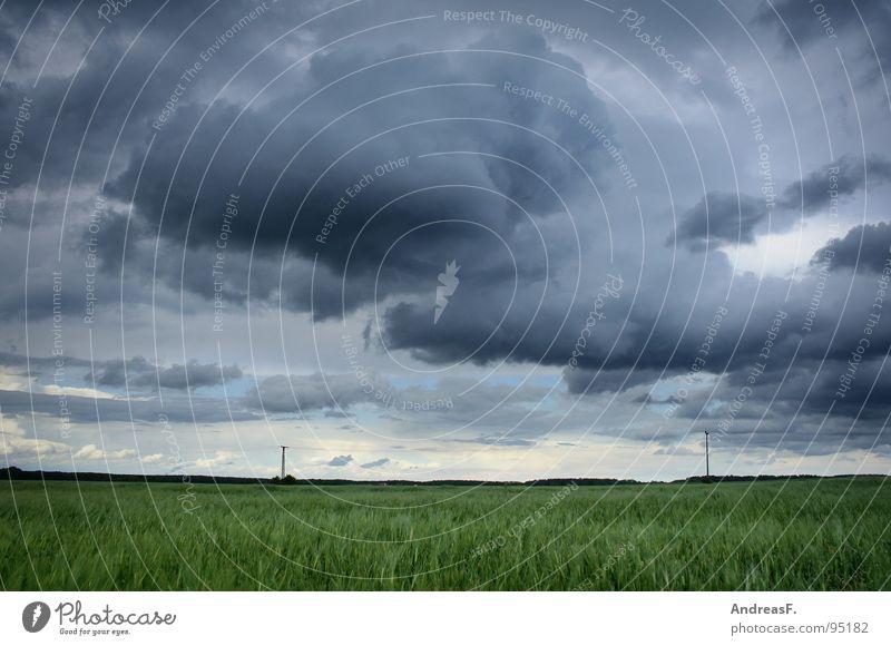 Sommer? Himmel Wolken Landschaft Regen Wetter Feld Wind Sturm Unwetter Amerika Gewitter Kornfeld Mais Tornado Orkan