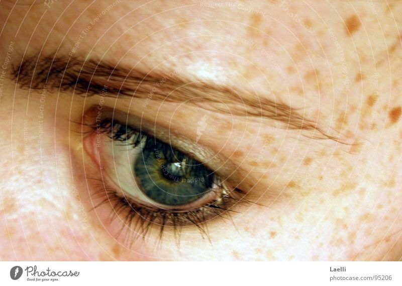 Sometimes it's hard to believe you remember me... grün blau Gesicht Auge Haut Sehnsucht bleich Sommersprossen Wimpern Augenbraue Pupille Regenbogenhaut