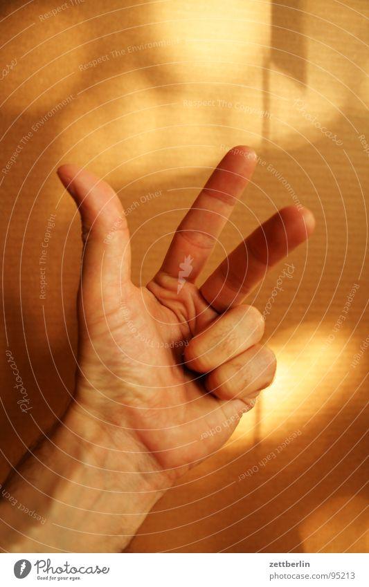 Drei Mensch Finger 3 gut Ziffern & Zahlen Dinge Konzentration Daumen gestikulieren Faust zählen Zeigefinger Körperteile Dublin Mittelfinger Pflaume