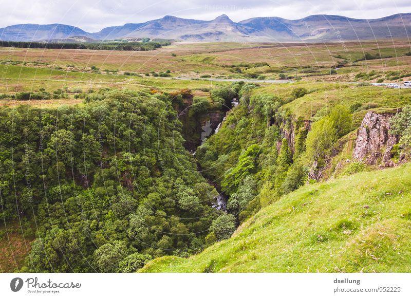 welcome to the jungle Himmel Natur blau grün Landschaft Ferne Wald Umwelt Berge u. Gebirge Wiese natürlich grau außergewöhnlich braun Felsen Erde