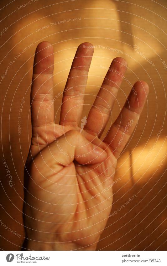 Vier 4 Finger Zeigefinger Mittelfinger Ringfinger Daumen Faust Konzentration zählen gestikulieren Mensch kleiner finger Pflaume numerieren Körperteile Stadtteil