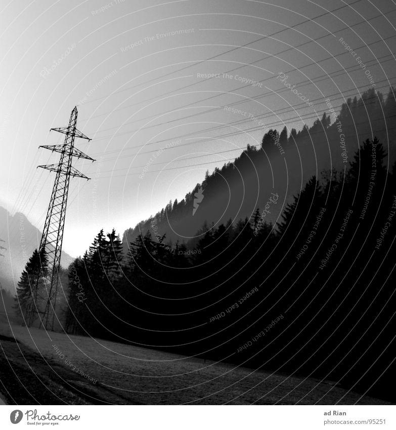 morgenstund hat mold im gund Wald Baum Tanne Buche Elektrizität Stahl Beton Wolken Winter Industrie Kiefer Seil enrgie Strommast Natur Sonne Regen Nebel Morgen