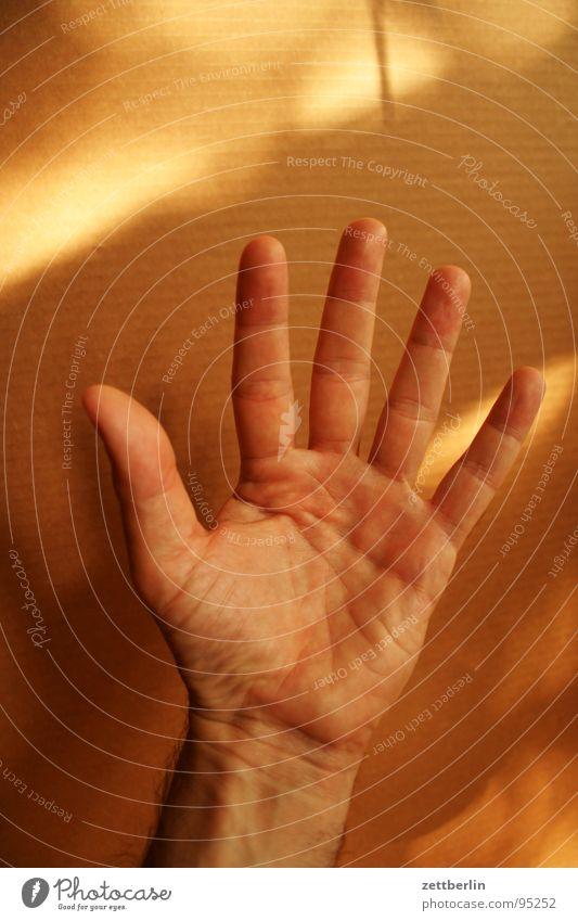 Fünf Mensch Hand Finger Kommunizieren stoppen Konzentration 5 Daumen Halt gestikulieren Faust winken Gruß zählen Zeigefinger Körperteile
