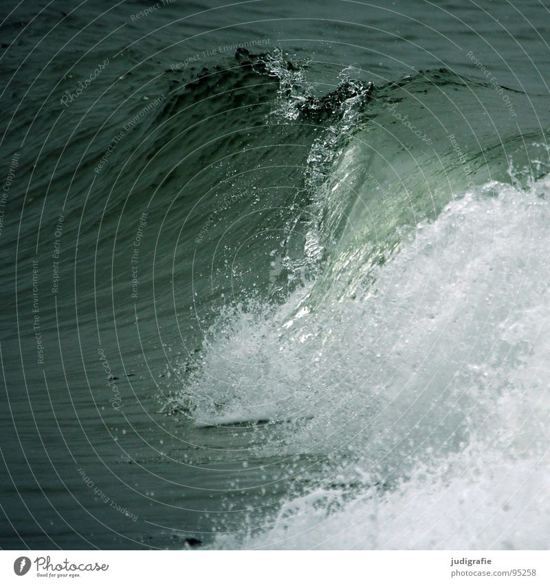 Erfrischung Wasser Meer Ferien & Urlaub & Reisen Farbe kalt Kraft Wellen Wassertropfen Kraft Sturm Leidenschaft Wildtier Ostsee spritzen Erfrischung Gischt