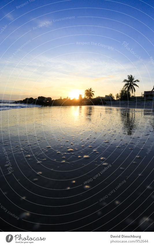 Momente wie diese Himmel Ferien & Urlaub & Reisen blau schön weiß Wasser Sommer Baum Meer Landschaft Wolken Ferne schwarz gelb Küste Sand