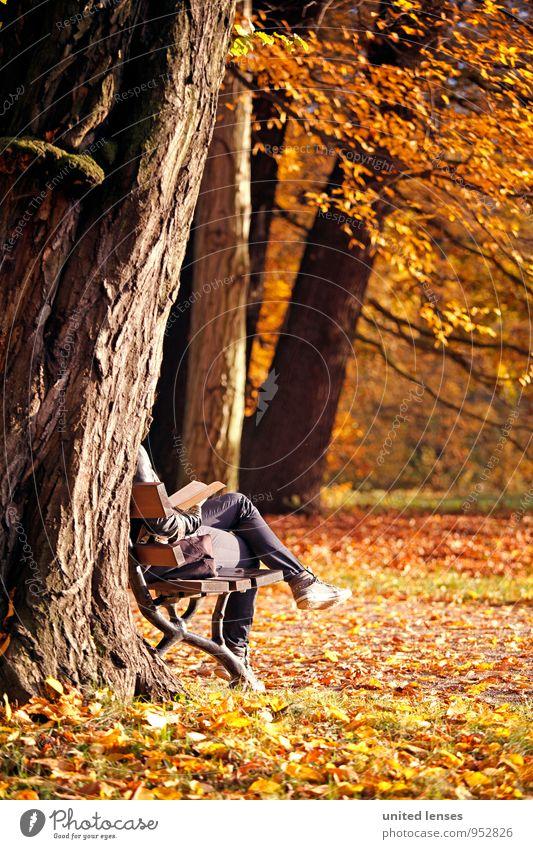 AK# Herbstbuch Frau Baum Erholung Einsamkeit Kunst Park Wetter orange Idylle Zufriedenheit sitzen ästhetisch genießen Buch Romantik