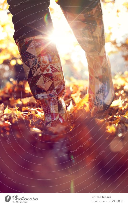 AK# Herbstmode Umwelt Natur Landschaft Pflanze ästhetisch Zufriedenheit Spaziergang laufen schreiten Gummistiefel herbstlich Herbstlaub Herbstfärbung