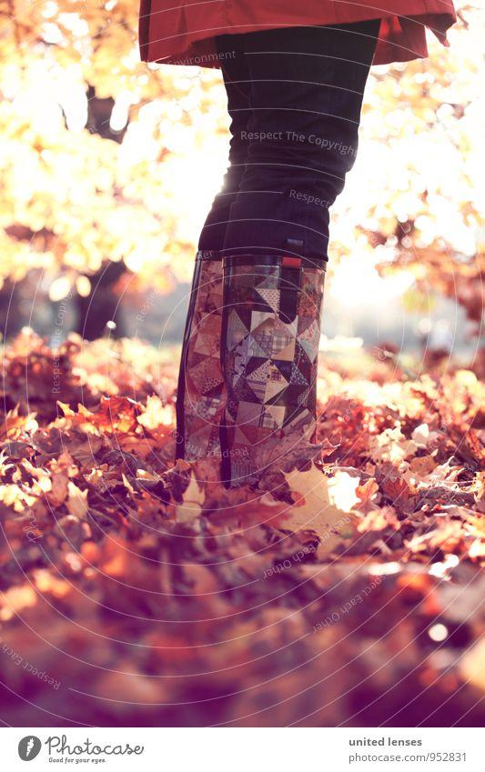 AK# Laubfrosch Frau Natur Pflanze rot Blatt Landschaft Umwelt Herbst Kunst Mode Wetter Zufriedenheit stehen ästhetisch Hose Herbstlaub