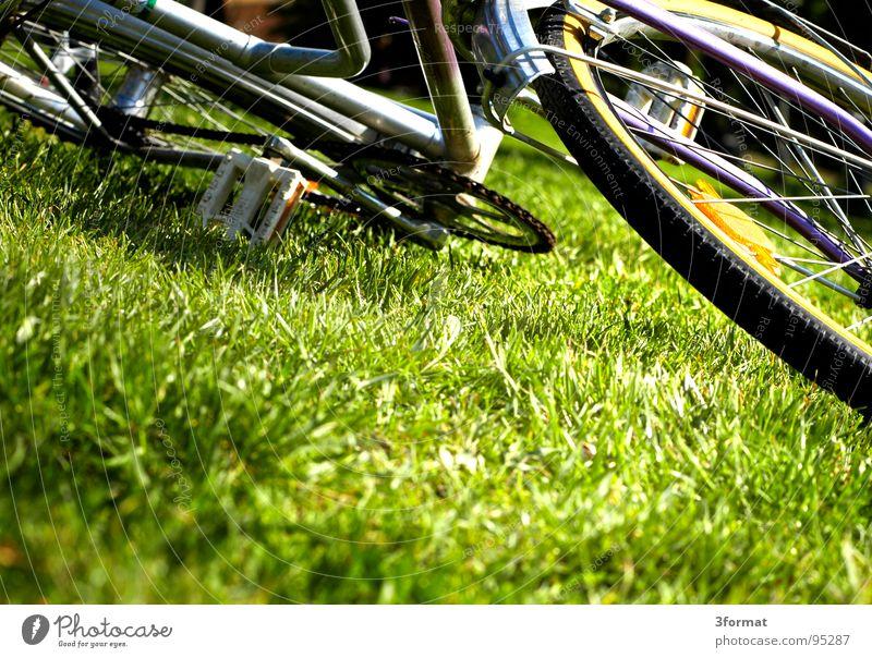 diamant Fahrrad Wiese beweglich Sommer zügellos Ferien & Urlaub & Reisen Fahrradweg fahren frei vorwärts Damenfahrrad Diamant lässig Spritztour losgehen