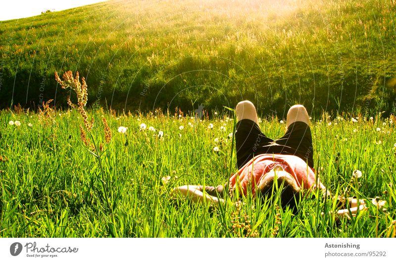 enjoy the sun Erholung Sommer Sonne Mensch maskulin Arme Beine 1 Umwelt Natur Landschaft Pflanze Wetter Schönes Wetter Wärme Gras Wiese Hügel genießen liegen