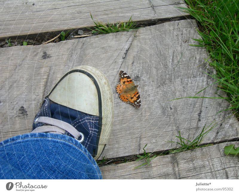 Tod oder Leben? Chucks Schmetterling gefährlich Farbe blau Jeanshose bedrohlich Beine