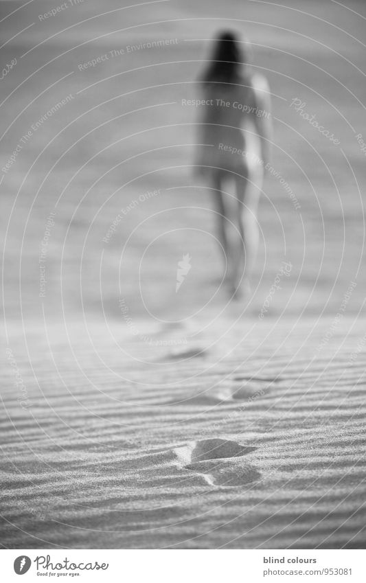 dépister Frau Ferien & Urlaub & Reisen nackt Weiblicher Akt Erotik Freiheit Sand Kunst Zufriedenheit laufen ästhetisch Düne Sandstrand lässig Urlaubsfoto Evolution