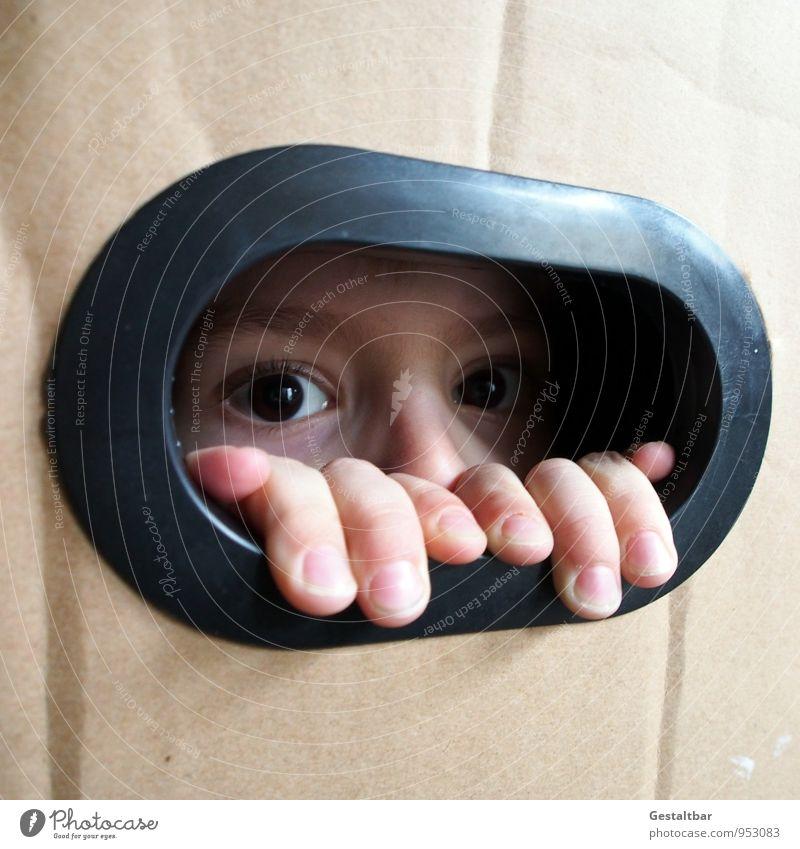 Lieblingsversteck. maskulin Kind Junge Gesicht Auge Nase Hand Finger 1 Mensch 3-8 Jahre Kindheit Kasten beobachten entdecken warten authentisch niedlich braun