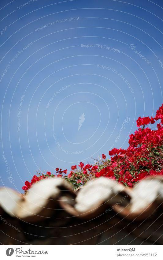 Dächerrot. Dorf ästhetisch Dach Dachziegel Dachgeschoss mediterran Blume Blauer Himmel Blühend Spanien Kanaren Farbfoto mehrfarbig Außenaufnahme Detailaufnahme