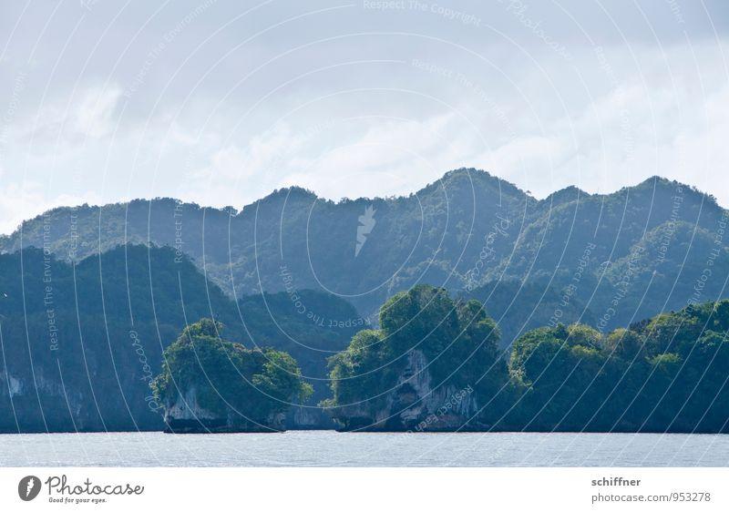 Labyrinth Umwelt Natur Landschaft Schönes Wetter Pflanze Grünpflanze exotisch Urwald Hügel Felsen Küste Bucht Fjord Meer außergewöhnlich Nationalpark rund Wald