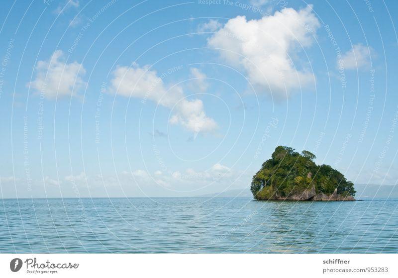 Ah jetzt, ja! Umwelt Natur Landschaft Pflanze Himmel Wolken Schönes Wetter Baum Grünpflanze exotisch Meer Insel Oase Tourismus Ferien & Urlaub & Reisen
