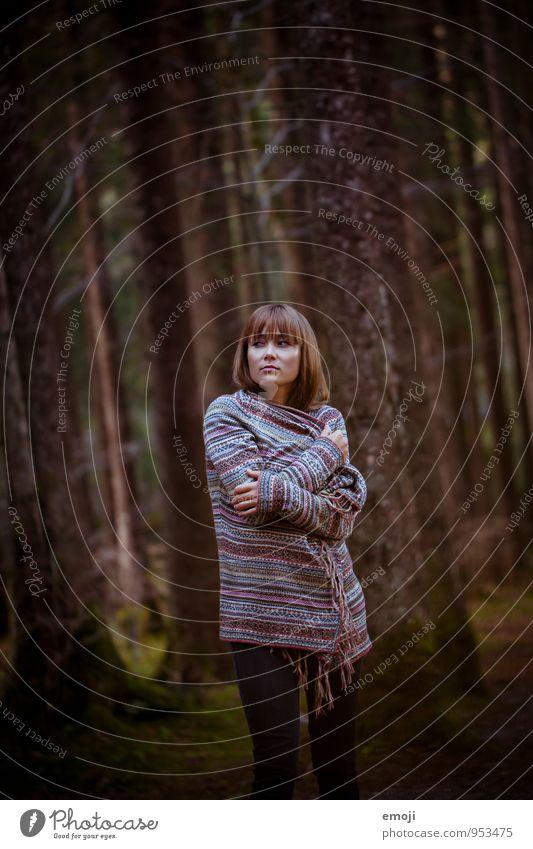 forest feminin Junge Frau Jugendliche 1 Mensch 18-30 Jahre Erwachsene Umwelt Natur Wald dunkel schön Farbfoto Außenaufnahme Dämmerung Schwache Tiefenschärfe