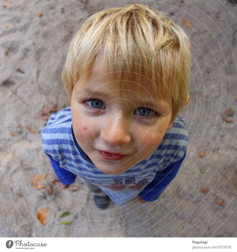 Erwartungsvoll Mensch maskulin Kind Junge Kindheit Kopf Gesicht 1 1-3 Jahre Kleinkind 3-8 Jahre beobachten Lächeln Blick stehen träumen Fröhlichkeit Gesundheit