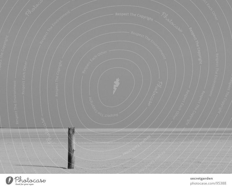 einsamkeit Horizont Strand Menschenleer ruhig Nordseestrand Einsamkeit Ferne Außenaufnahme Schwarzweißfoto Kurzzeitbelichtung Sommer Schatten Erholung Küste