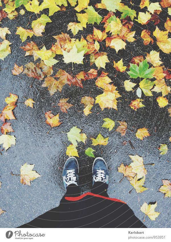 Dienstags: Regen Gesundheit Freizeit & Hobby Freiheit wandern Sportler Joggen Mensch Unterleib 1 Natur Herbst Wetter schlechtes Wetter Blatt Ahorn Ahornblatt