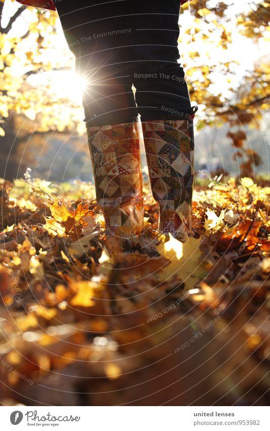 AK# Sonnenstiefel Natur Pflanze Landschaft Umwelt Herbst Beine Kunst Mode Zufriedenheit stehen ästhetisch Herbstlaub Stiefel Herbstfärbung Herbstbeginn
