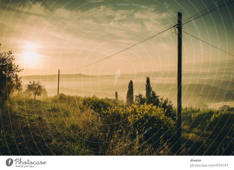 Tuscia {4} harmonisch Erholung ruhig Ferien & Urlaub & Reisen Tourismus Ferne Sommer Sommerurlaub Sonne Hochspannungsleitung Umwelt Natur Landschaft Himmel