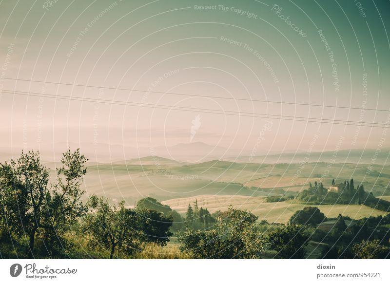 Tuscia {10} Natur Ferien & Urlaub & Reisen Pflanze Sommer Baum Erholung Landschaft ruhig Ferne Umwelt Feld Tourismus wandern Schönes Wetter Italien Kabel