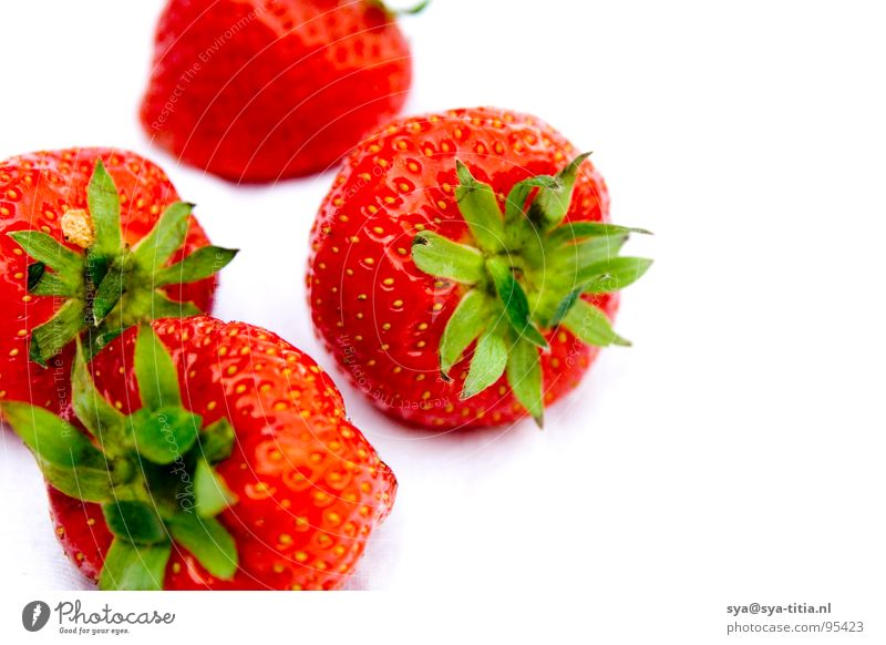 strawberries rot Frucht mehrere