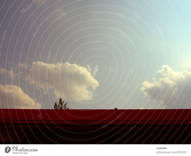 emporkoemmling Natur Himmel Baum Sommer Wolken Einsamkeit träumen Dach verstecken Baumkrone Schüchternheit Isolierung (Material)