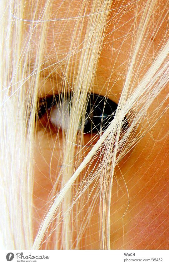Jenny p-3 blond Haarsträhne Kind Kleinkind Auge eye eyes hell bright Blick Haare & Frisuren Haarsträhnchen hair Momentaufnahme